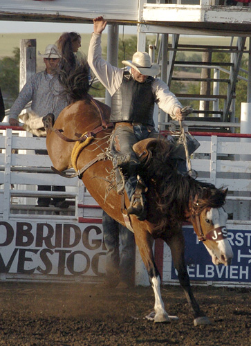 Jesse Bail of Camp Crook strikes a classic pose atop Sutton Rodeo's horse Fancy during the July 2 performance of the Sitting Bull Stampede. Bail scored 81 points and finished second in saddle bronc riding.